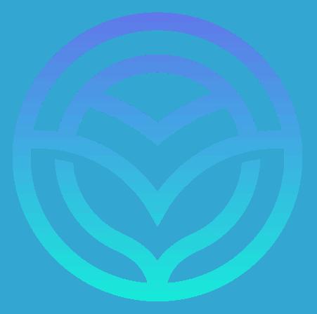 verocom logo trans